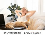 the cat is lying on the table... | Shutterstock . vector #1702741084