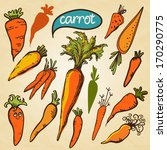 set simple sketch icons carrots ... | Shutterstock . vector #170290775