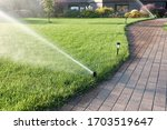 Sprinkler Watering Grass And...