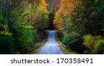 Autumn Color Along A Road In...