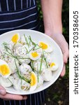 Hands holding a bowl of delicious potato salad topped with boiled eggs and chives at a barbecue - stock photo
