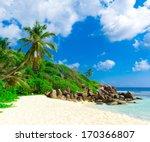 palms dream summertime  | Shutterstock . vector #170366807