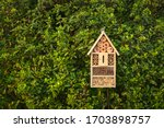 Insect hotel in a green hedge...