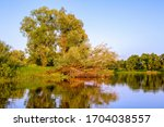 river  trees. pripyat river in...   Shutterstock . vector #1704038557