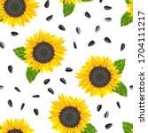 Blooming Yellow Sunflower ...