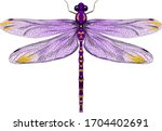 Purple Dragonfly With Delicate...