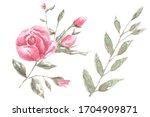 watercolor floral set of...   Shutterstock . vector #1704909871