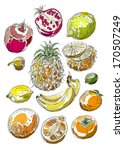 vector illustration of tropical ... | Shutterstock .eps vector #170507249