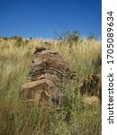 Tiered Rock With Layer...