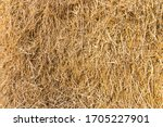 Dry Straw Surface. Reeds...