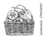 sketch fresh peppers in wicker...   Shutterstock . vector #1705236907