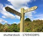 Rustic Wooden Signpost To Beer...
