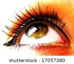 eye | Shutterstock . vector #17057380