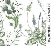 Seamless Pattern Of Plantain...