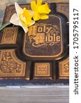 Antique 1860 Holy Bible accented with yellow daffodils.