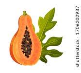 half of papaya fruit with... | Shutterstock .eps vector #1706202937
