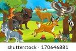 Forest Animals   Illustration...