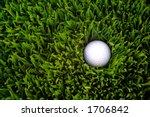 Golf Ball In The Rough Grass