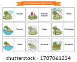 Natural Disasters Flash Cards   ...