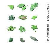 set of natural green leaf plant ... | Shutterstock .eps vector #1707067537