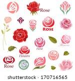Stock vector set of rose flower design elements 170716565