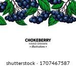 chokeberry vector drawing. hand ... | Shutterstock .eps vector #1707467587