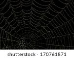 spider web with black... | Shutterstock . vector #170761871