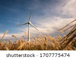 A Windmill In A Reed Field And...