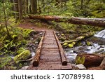 Closeup Of Wooden Foot Bridge...