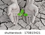 hands holding tree growing on... | Shutterstock . vector #170815421