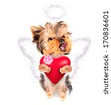 cute lover valentine puppy dog... | Shutterstock . vector #170836601