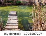 Old Wooden Fishing Pier On A...