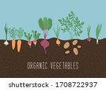 vegetable garden banner.... | Shutterstock .eps vector #1708722937
