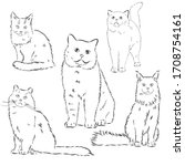 Cats Set  Vector Illustration ...