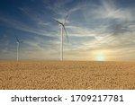 Wind Turbines In The Wheat...