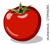red ripe tomato vector... | Shutterstock .eps vector #170936381