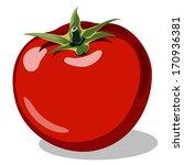 red ripe tomato vector... | Shutterstock .eps vector #170936381