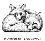 little foxes. wall sticker.... | Shutterstock .eps vector #1709389924