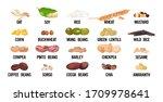 set seeds beans and grains...   Shutterstock .eps vector #1709978641