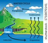Water Cycle Vector Illustration....