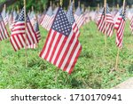 Many Lawn American Flags...
