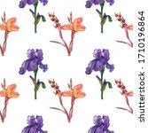 canna  iris  seamless pattern   ... | Shutterstock . vector #1710196864