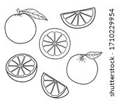 set of linear drawing oranges... | Shutterstock .eps vector #1710229954