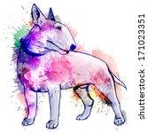 Bull Terrier Grunge Illustration