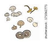 mushrooms | Shutterstock . vector #171062771