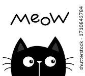 black kitten cat head face... | Shutterstock .eps vector #1710843784