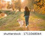 Golden Retriever Dog With A...
