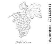 monochrome illustration grape... | Shutterstock .eps vector #1711230661