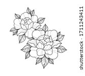linear hand drawing flowers for ... | Shutterstock .eps vector #1711243411