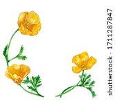 Watercolor Poppy Flower Wreath...